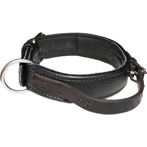 Julius K9 ECO Leather Collar with adjustable Handle in the group Dog Equipment / Dog Collars / Leather Collar at Dogmania (1386)