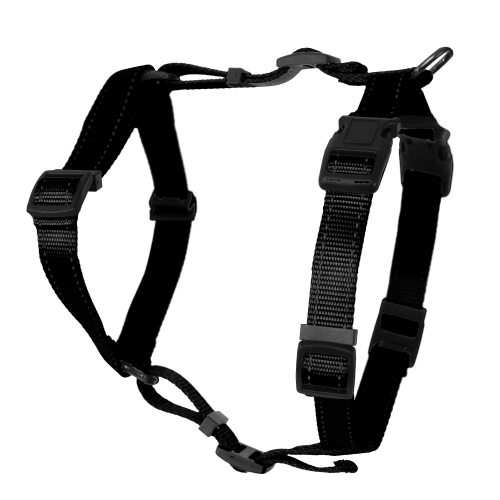 Dogman Adjustable H-harness Jet Black in the group Dog Equipment / Dog Harnesses / Y Harnesses at Dogmania (1429)