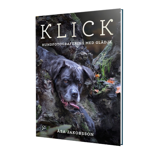 Klick - Hundfotografering Med Glädje in the group Other / Books / Books at Dogmania (1702)