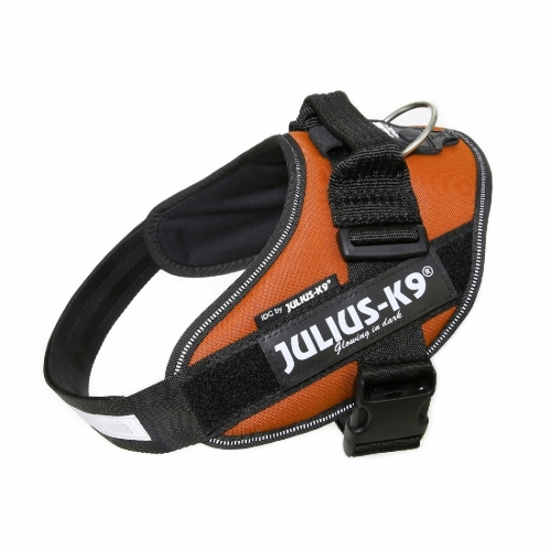 Julius K9 IDC Harness Copper in the group Dog Equipment / Dog Harnesses at Dogmania (2023)