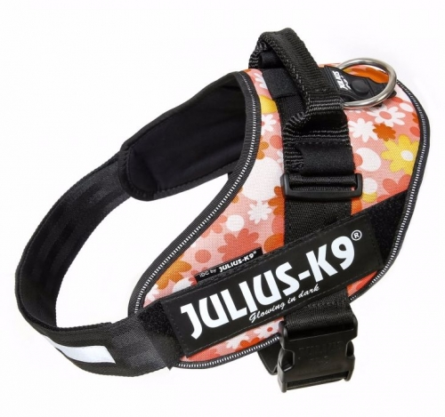 Julius K9 IDC Harness Pink with Flowers in the group Dog Equipment / Dog Harnesses / Chest Harness at Dogmania (671)