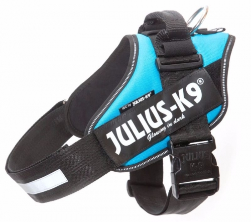 Julius K9 IDC Harness Turquoise in the group Dog Equipment / Dog Harnesses / Chest Harness at Dogmania (883)