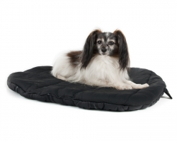 Back On Track Dog Bed Oval