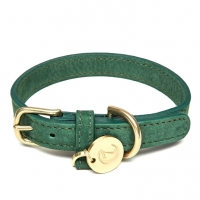 Cloud7 Dog Collar Tiergarten Park Green