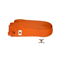 Dog's Craft Obedience Square Orange