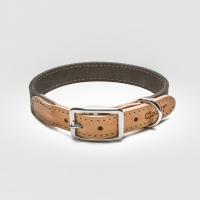 Cloud7 Tivoli Canvas Leather Hundhalsband