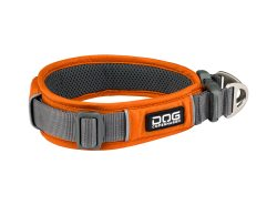 Dog Copenhagen Urban Explorer Collar Orange Sun NY 2020