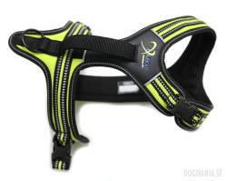Axaeco 4 Season Power Harness