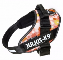 Julius K9 IDC Harness Pink with Flowers