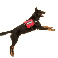 Julius K9 IDC Side Bags Red