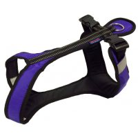 Zero DC SHORTER Harness Purple