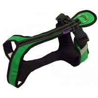 Zero DC SHORTER Harness Green