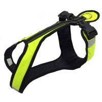 Zero DC SHORTER Harness Neongreen