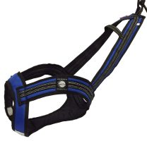 Zero DC FASTER Harness Blue