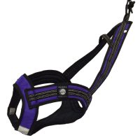 Zero DC FASTER Harness Purple