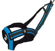Zero DC FASTER Harness Turquoise