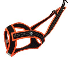 Zero DC FASTER Harness Black/Orange
