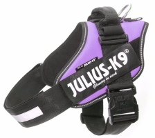 Julius K9 IDC Harness Purple