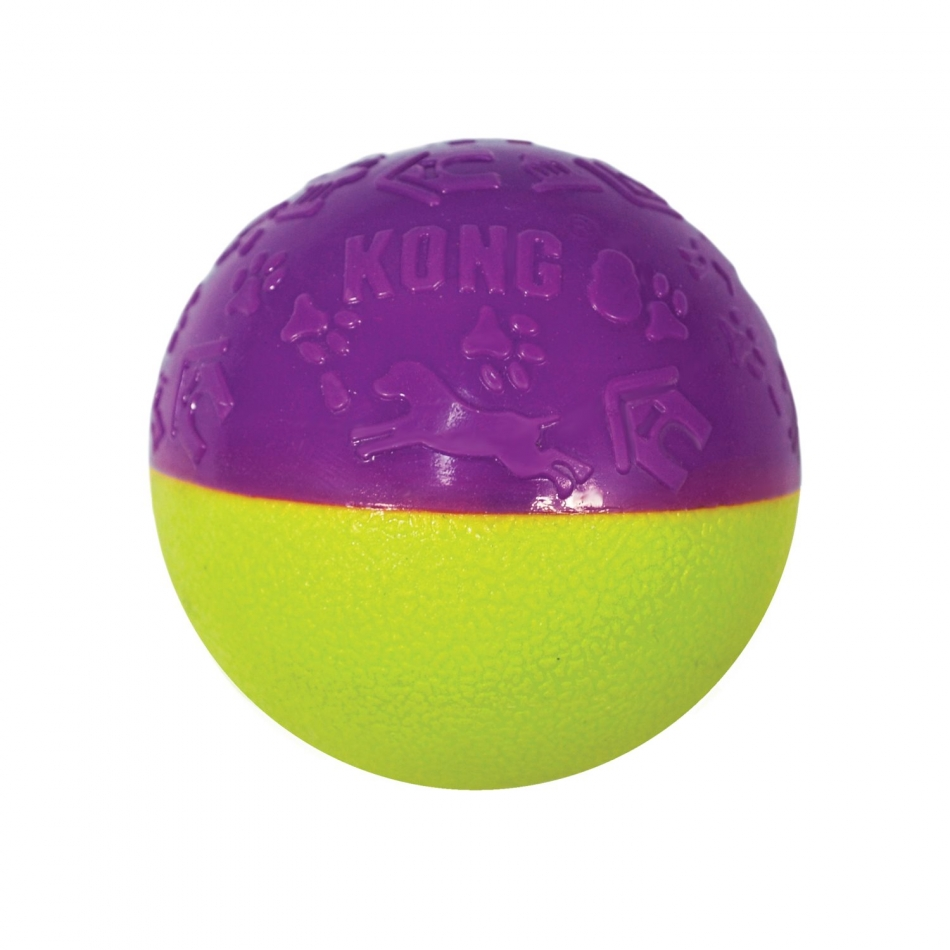 Kong Iconix Ball Squeaky Dog Toy